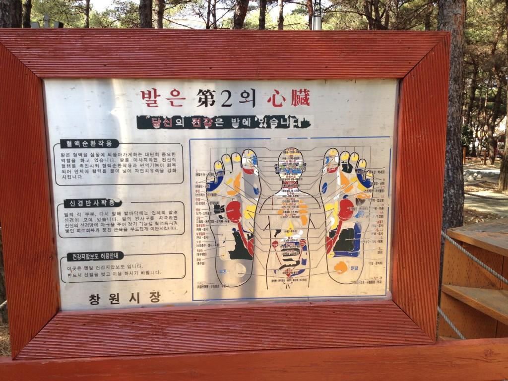 Barefoot Park Map