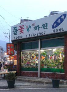 Deoksong-Dong yarn