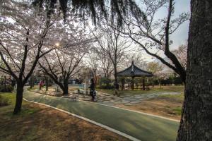 Seok-dong Park