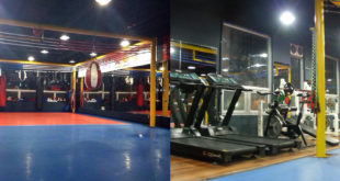 Foreigner-Friendly Martial Arts Gyms in Changwon