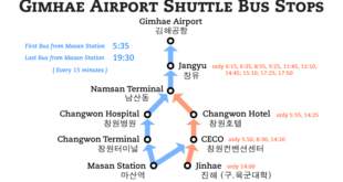 Buses to the Airports (Busan and Incheon)