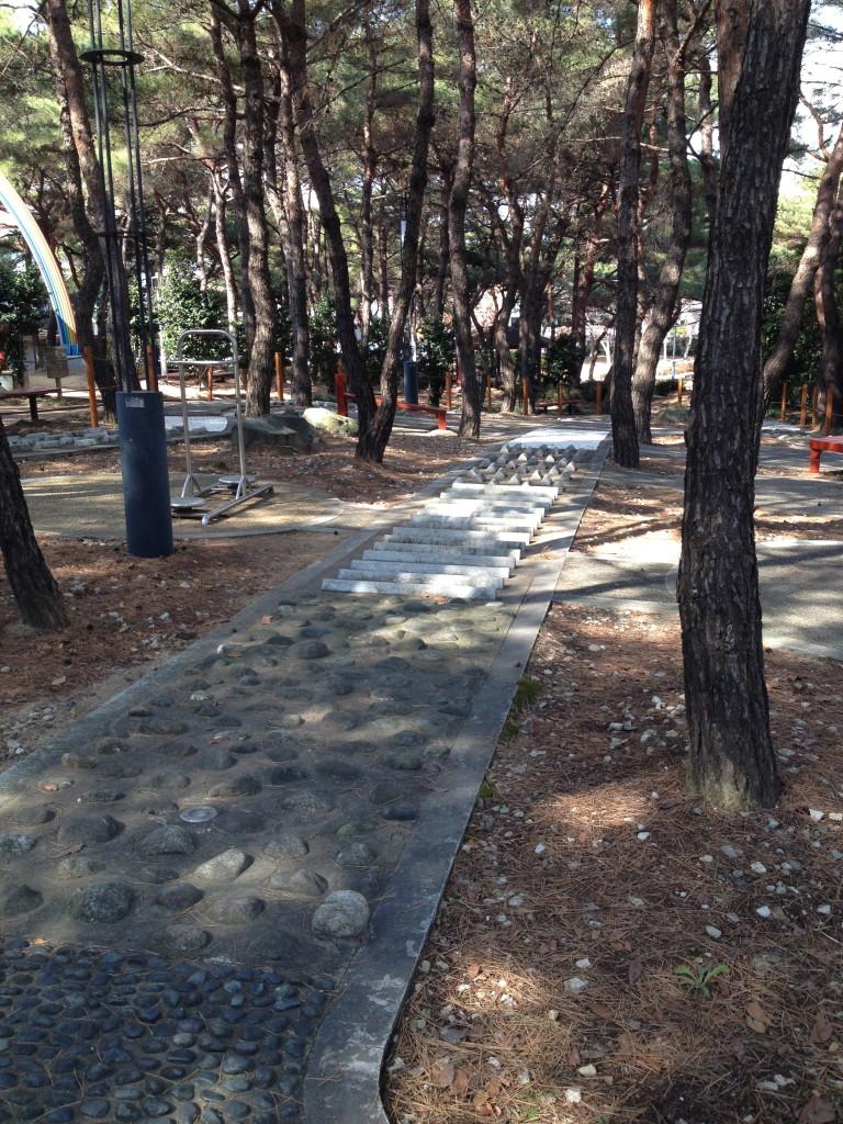 Barefoot Park 4