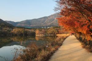 Jinhae Eco Park